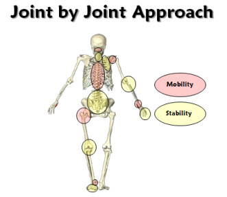 joint-by-joint-slide1