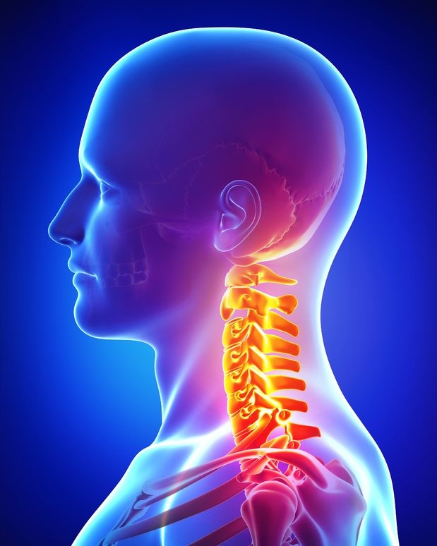 The Multifactorial Causes And Solutions To Chronic Neck Pain