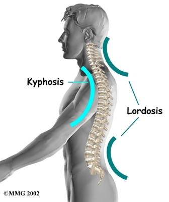 Cervical-Lordosis-Diagram[1]