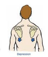 How to properly & permanently resolve scapular dyskinesis ...